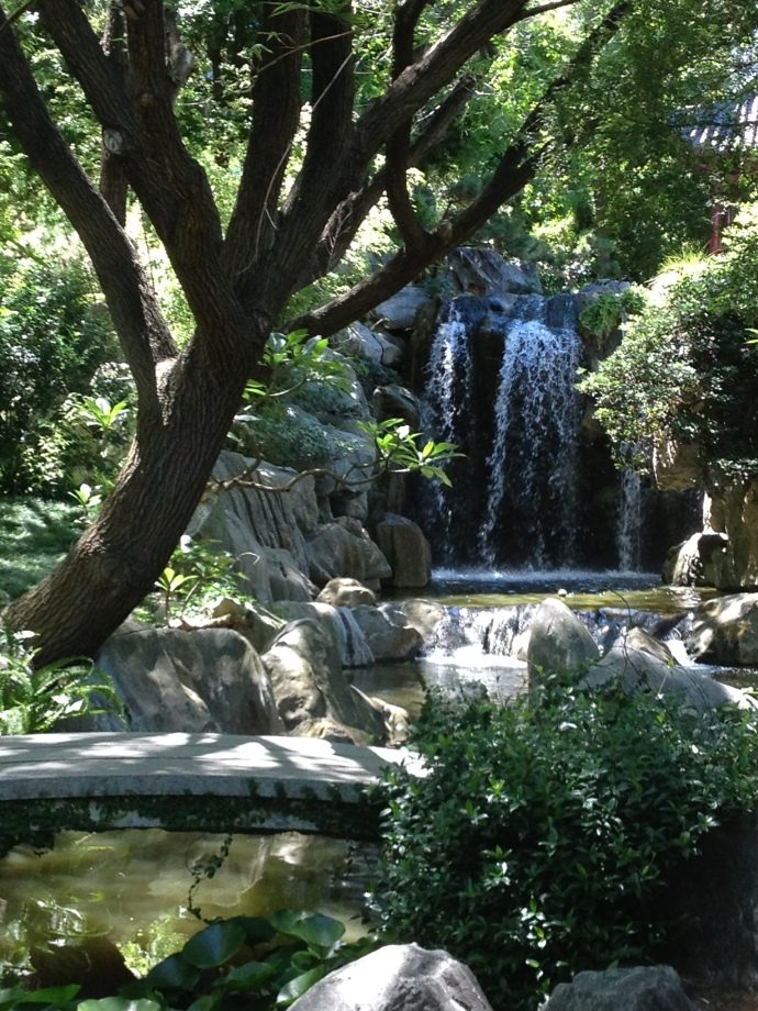 Waterfall Oasis