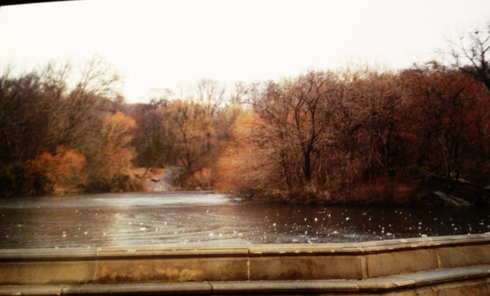 Central Park Winter 2