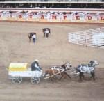 Wagon Race 3