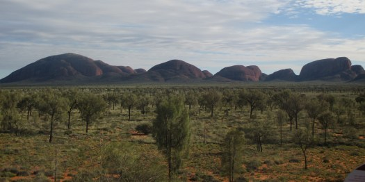 Kata Tjuta Panorama Linda Botting